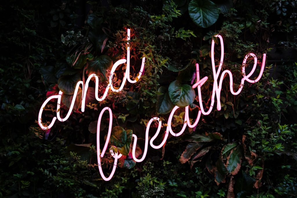 "Leaves around a neon pink sign that reads, ""and breathe."""